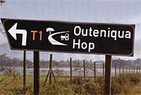 Outeniqua hop