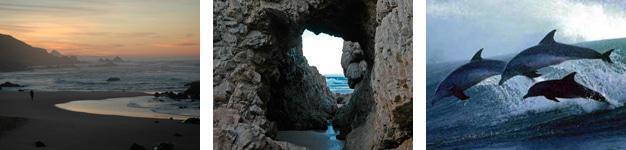 Arch Rock Beach Montage