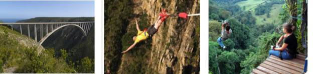 Bungy Jumping to Forest Canopy Slides
