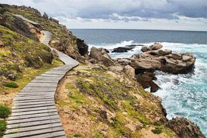 Plettenberg Bay - Boardwalk at Robberg Nature Reserve