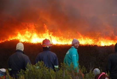 Kranshoek Fire June 2017