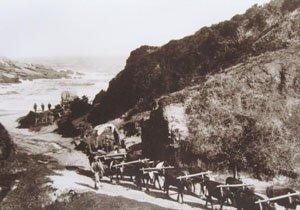 Plettenberg Bay News