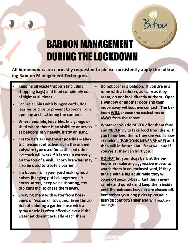 Baboon Monitoring Program
