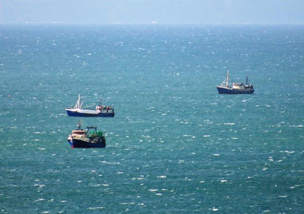Trawler Awareness Plett