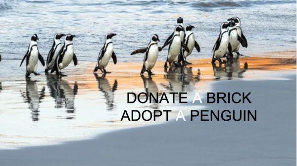 SAPREC - Adopt a penguin or donate a brick