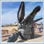 Youth Competition: name the whale sculpture on Central Beach
