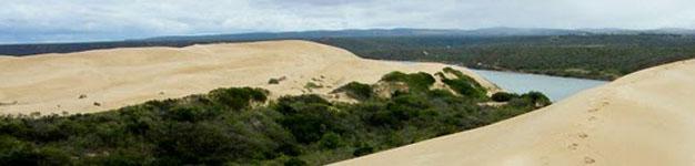 Giant Sand Dunes Port Elizabeth