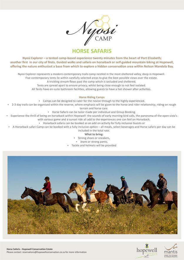 Nyosi Horse Safaris