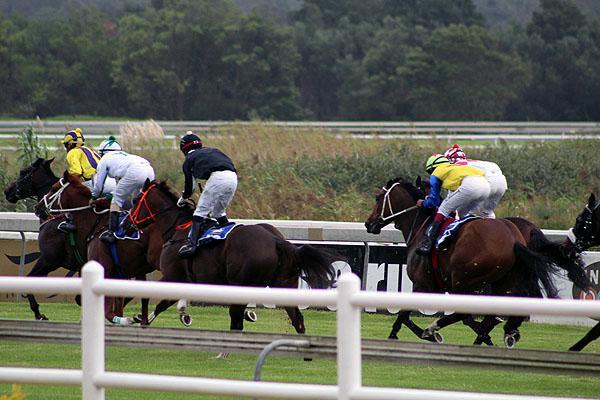 Fairview Races