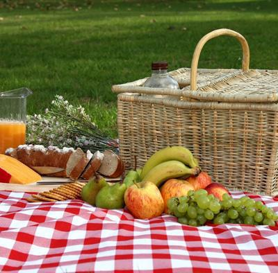 Picnic with your partner