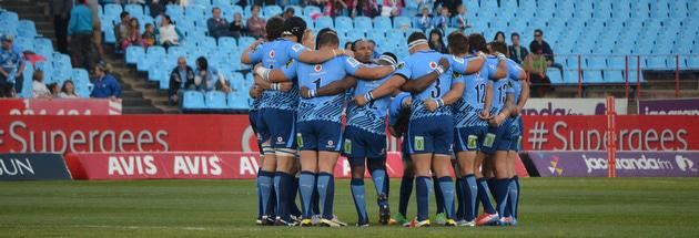 Bulls at Loftus at Bulls vs Kings match