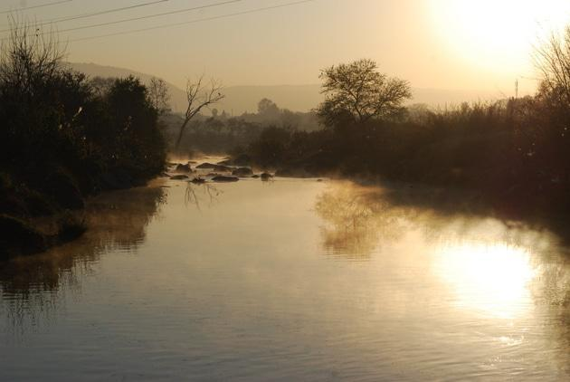 The Apies River near PPC.