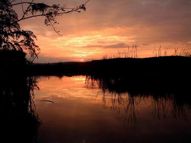 Sunset - Dinokeng