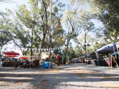 Irene Village Market 244