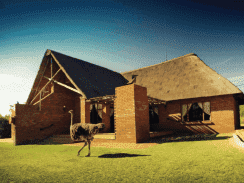 Monateng Safari Lodge 244
