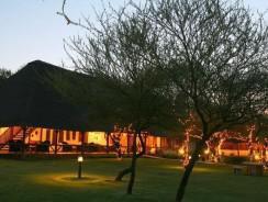 Mongena Game Lodge 244