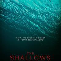 The Shallows 200