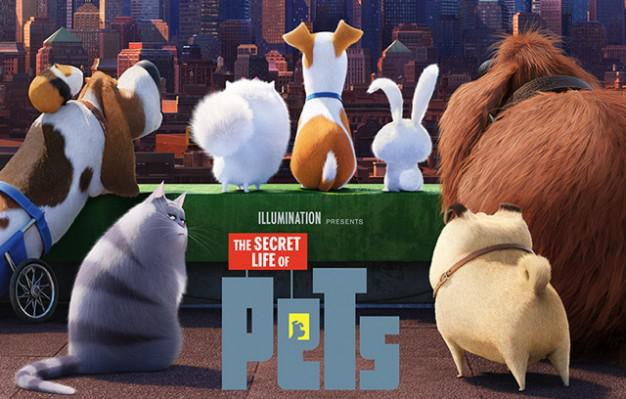 the secret life of pets releases pretoria