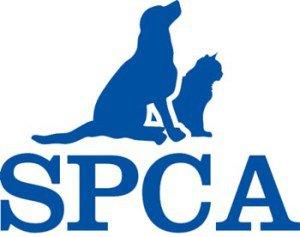 SPCA Springs