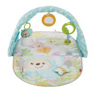 fp-butterfly-dreams-musical-playtime-gym