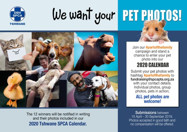 Tshwane SPCA Pet Photo 2020 Calendar Campaign