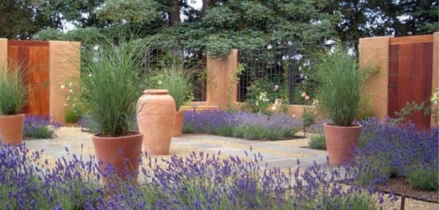 drought-resistant-garden626