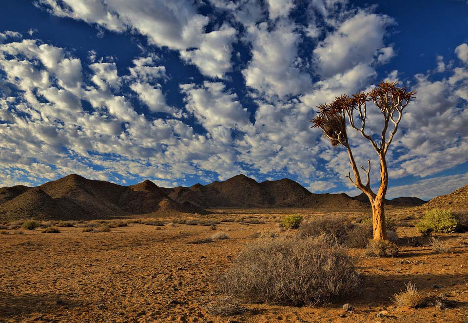 Top 5 Magical South African Road Trips