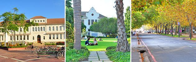 Stellenbosch | University & Oaks
