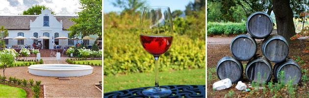 Stellenbosch   Wine Estates