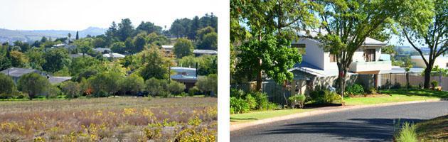 Stellenbosch | Rozendal
