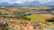 Stellenbosch | MTB Trails