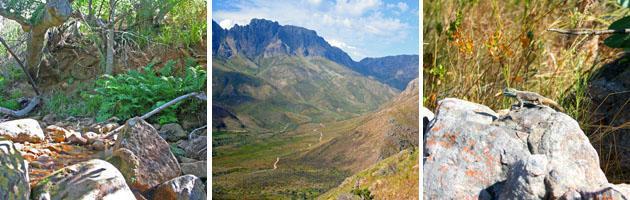 Stellenbosch | Sosyskloof Hiking Trail
