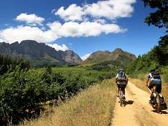 Cycling in Stellenbosch