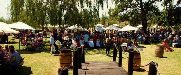 Riesling Rocks | Festival 2013 | Hartenberg Wine Estate
