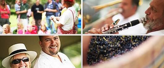 Wine festival in Stellenbosch
