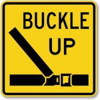 Buckle up, or be fined, Martins warns