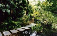 stellenbosch_university_garden_original