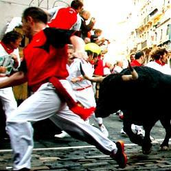 Straggling bull gores Pamplona guide