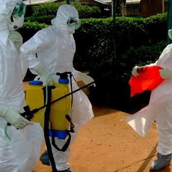 Funds pledged for Ebola research