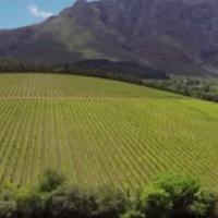 Video of Cape Town & Stellenbosch