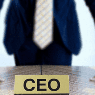 Qualifications of South Africa's CEOs