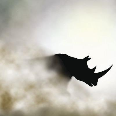 Rhino face trained squads