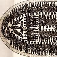 Sunken 18th century slave ship found off Cape Town SA