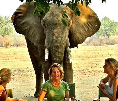 Legendary Safari Guides - five minutes with Suzie Cazenove
