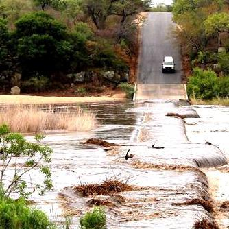 Floods in Kruger Park' downtown Johannesburg