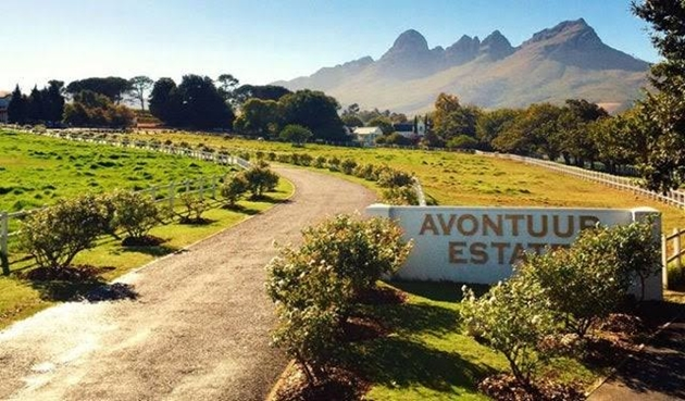 Avontuur Wine Estate: You'll Be On Cloud Wine...