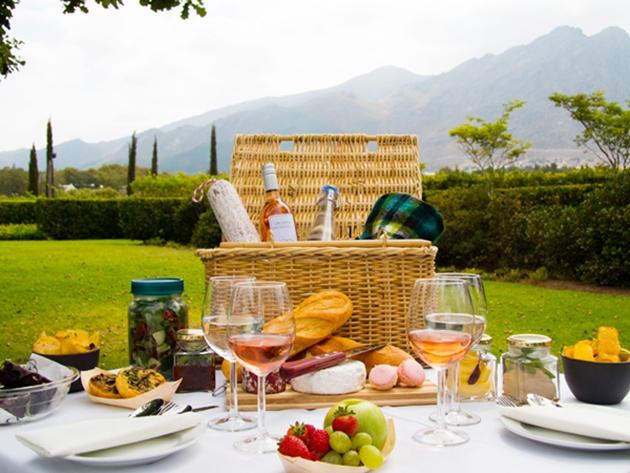 15 Top Wine Farm PicnicsIn South Africa