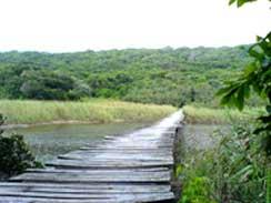 Umhlanga Lagoon Nature Trail
