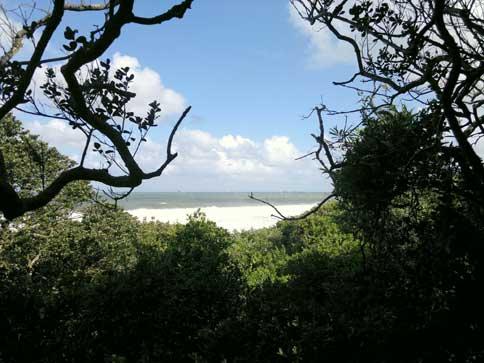 Umhlanga UIP Green Spaces Initiative