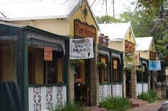 Plum Tree Coffee Shop in Parys